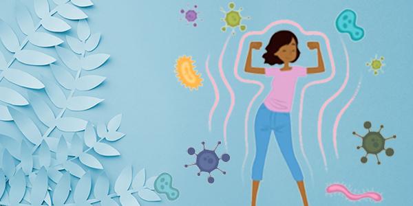 Comment fonctionne le système immunitaire?