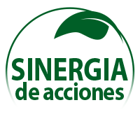 synergie-actions_es