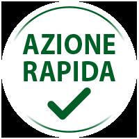 action-rapide_it