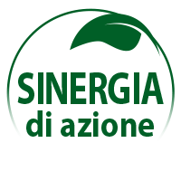 synergie-actions_it