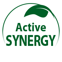 synergie-actions_en